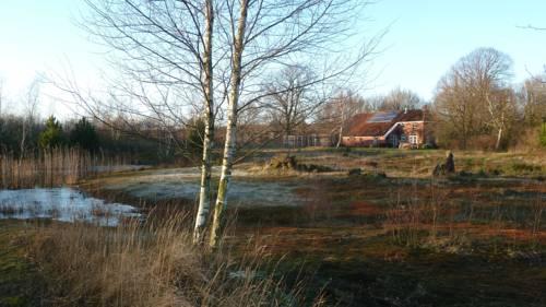Apartment Braamberg in Mussel